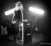 marshall-amp-kühlschrank